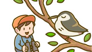 「君なんでここにいるの?」新宿駅に『絶滅危惧種の鳥』が現れるwwwwwww