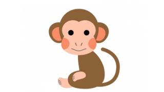 【動画】中国人さん、マナーで猿に負けてしまうwwwwwwwwwww