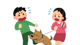 【画像】ツイ民さん、犬に腕を咬まれてとんでもないことになってしまう