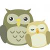 【画像】赤ちゃんフクロウの寝方wwwwwwwww
