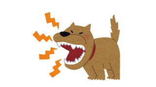 ◆求む!◆犬の喧嘩を止めようとしたオジサンが高速回転するgifください!