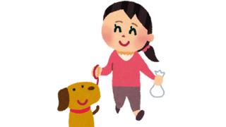 ◆完全に一致◆イタリア高級ブランドの新商品が『犬用ゴミ袋』にそっくりだと揶揄される →画像