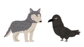 カラスとオオカミがタッグを組んだ結果www