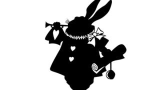 ◆達人の間合い◆ウサギが決闘してたwwwwwwww
