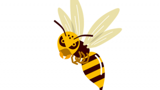 ◆空中最強説◆スズメバチさん、とんでもない相手に食べられてしまう →