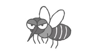 ◆伝染病対策◆で遺伝子組み換えた『蚊750,000,000匹』を放つ計画が承認