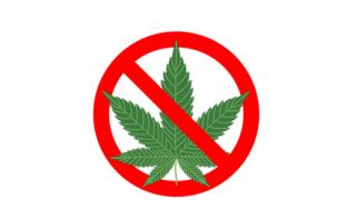 「詐欺に遭いました」大麻を買ったら『お茶漬けの素』をつかまされた奴wwwwww