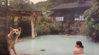 ◆混浴温泉◆が好きな女子のレベル これが現実 →動画像