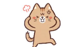 【動画】はさまった猫さん、ブチ切れるwwwwwwwww
