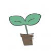 人類の歴史を変えた植物ランキング