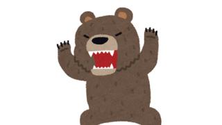【動画】崖を登ってくる野生の熊に石を投げた結果
