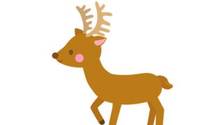 【画像】奈良公園の『やせ細ったシカ』が想像以上でワロタw