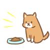 ◆豹変悲報◆イッヌ、ご飯の量に不満を漏らしてしまう →