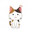 【悲報】目覚めたら知らない男とベッドにいたメス猫の反応 →