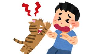 【画像】猫さん、病院で大暴れしガッチガチに拘束される →