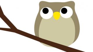 【悲報】フクロウさん、走るとキモい →