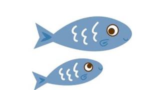 【実験】鏡を見たお魚さん ぐう賢いwwwwwww