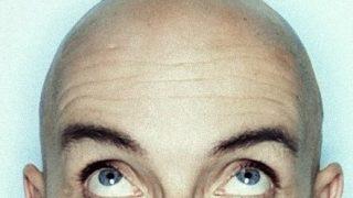 【ハゲ朗報】理化学研究所、毛髪の再生メカニズム解明へ