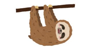 【酷い…】ナマケモノさん、お猿さんにご飯を取られて咽び泣く