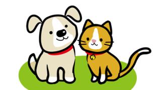 【閲覧注意】猫さん、犬の群れに襲われ無残な姿に…