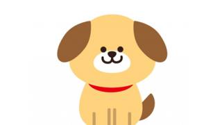◆ヘイト悲報◆韓国人が発狂しそうな犬みつかる