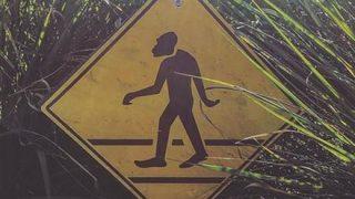 ◆動画◆この陰キャさん、遭遇注意……