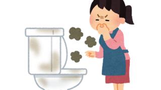 【悲惨】トイレが臭すぎて少女が死亡