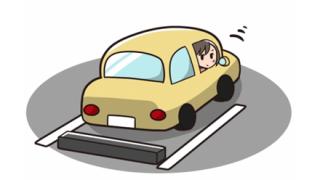 ◆動画◆ま~んさんの珍行動『世界一慎重な駐車』