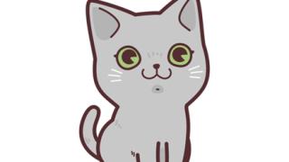 【動画】飼い猫が『お手みたいなやつ』出来るようになったwwwwwwwww