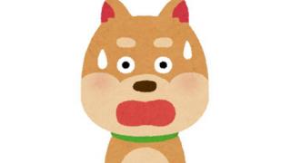 【リアルぞぬ】胴体が短すぎる犬みつかる →動画像