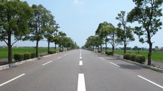 ◆道路◆が『15年放置』されるとこうなる →動画像