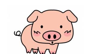 【悲報】中国人さん『豚にバンジージャンプ』させて叫び声を聞き大笑い →動画