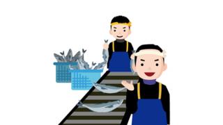 【衛生観念】韓国の漁港『魚の仕分け風景』が話題に →動画像