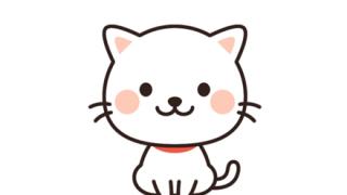 【朗報】トルコの猫が可愛すぎると話題に →動画像
