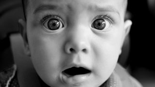 「ぞっとする…」不機嫌な『赤ちゃんの泣き声』を『完璧再現』する鳥 →動画
