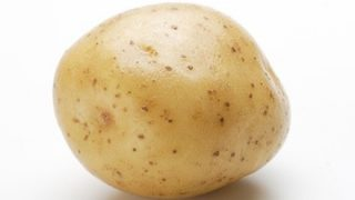 【画像】ガチのジャガイモが『アイドル』を始めた結果www
