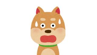 【動画】デブが配信中に泥酔し爆睡、寝返りで子犬を圧死させ炎上 ⇒